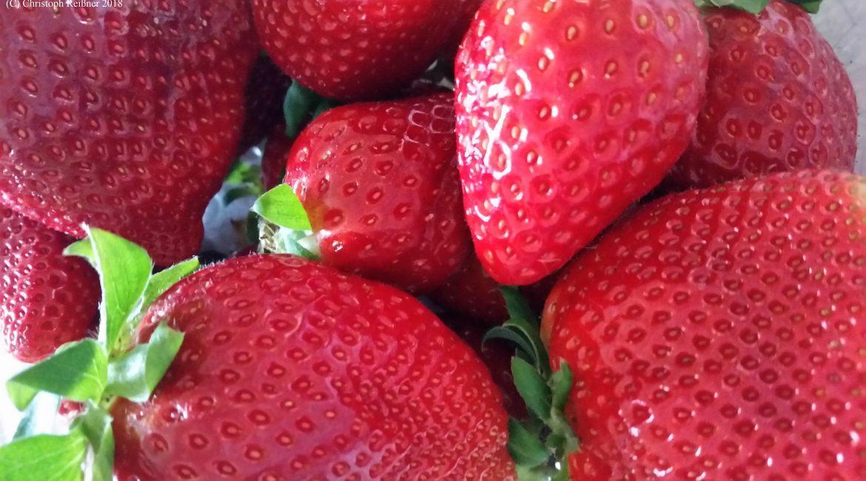 Die seltensten Erdbeersorten Teil 1