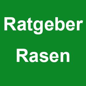 Ratgeber: Rasen