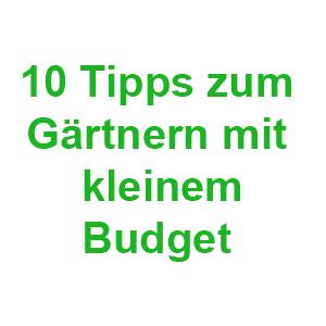 10 Tipps zum Gärtnern mit kleinem Budget
