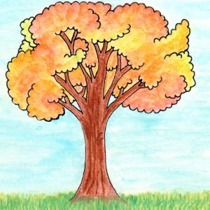 Read more about the article Gartenarbeiten im Oktober – Endlich Herbst